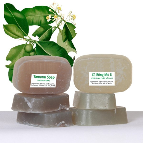 Organic Tamanu Oil Soap